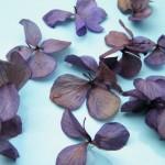 Икебана из цветов как украшение интерьера