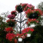Цветочницы вертикального озеленения